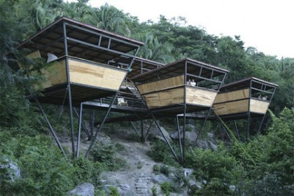 Jungle Hotel in Mexico